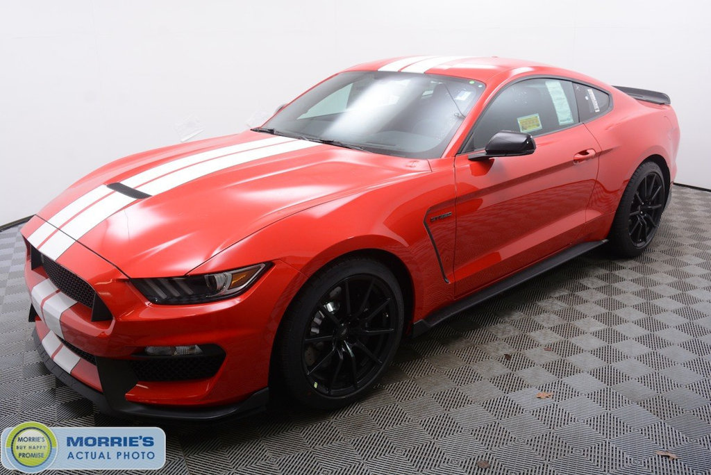 2018 Mustang Gt Pricing >> New 2018 Ford Mustang Shelby GT350 Fastback 2dr Car in Hopkins #FN24404 | Morrie's Automotive Group